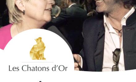 MyTL | Soirée Chatons d'Or